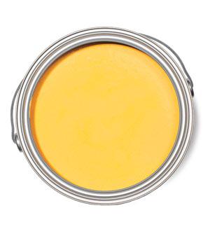 Yellow Raincoat Benjamin Moore