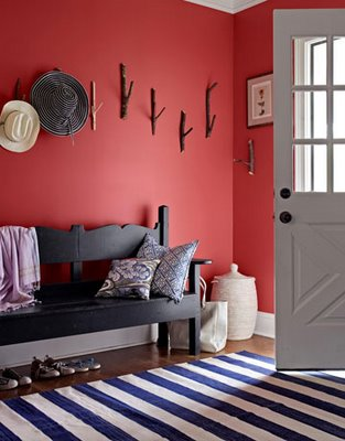 Country living navy and coral