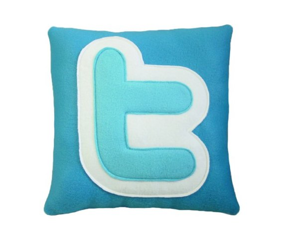 Turqoise twitter pillow