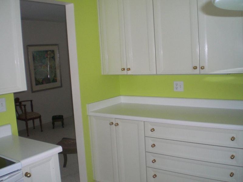 Arthaud_kitchen_with_new_paint_1-26-11_003