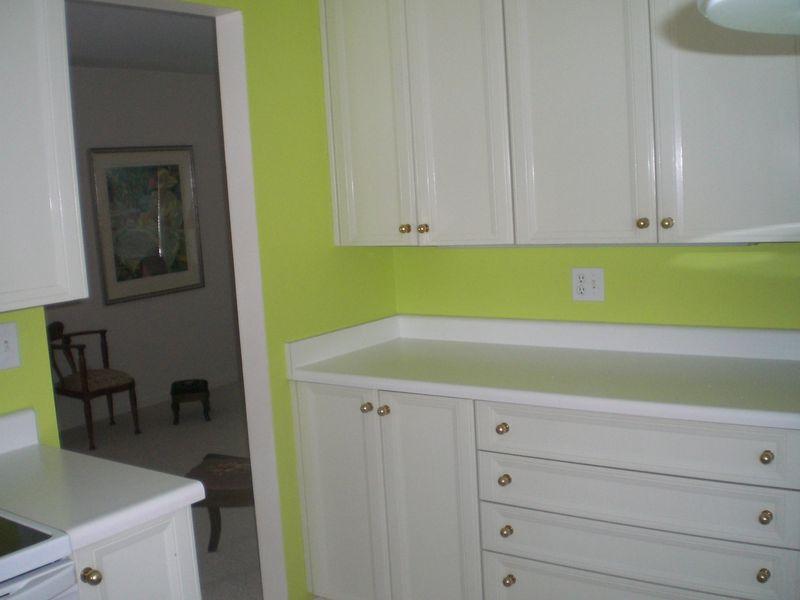 Arthaud_kitchen_with_new_paint_1-26-11_003