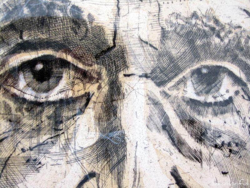 Einstein eyes