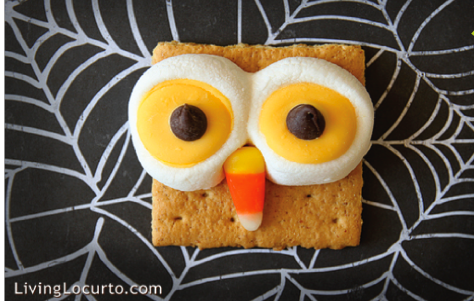 Owl-blog-photo-1-530x800