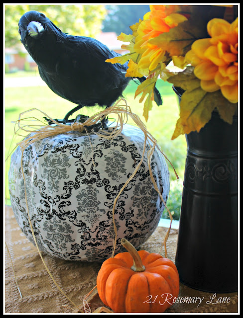 Shelf liner pumpkin