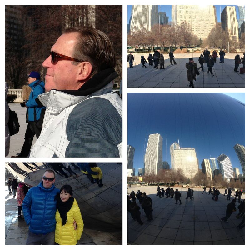 Collage 3 the bean