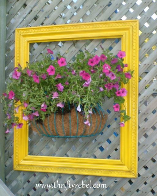 Framed flowers 1