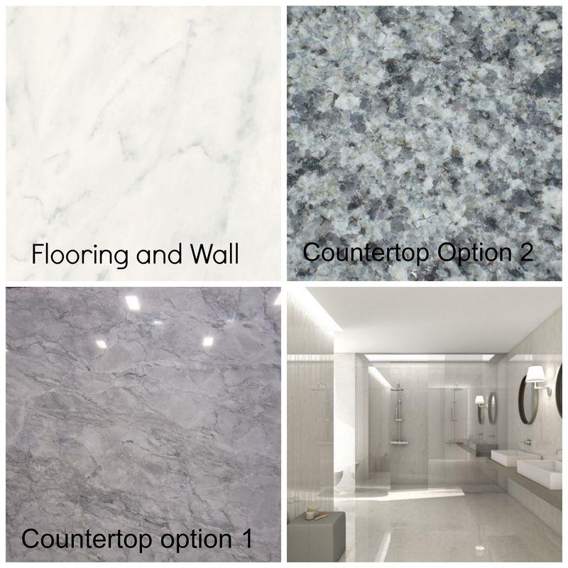 Master bath surface options.jpg