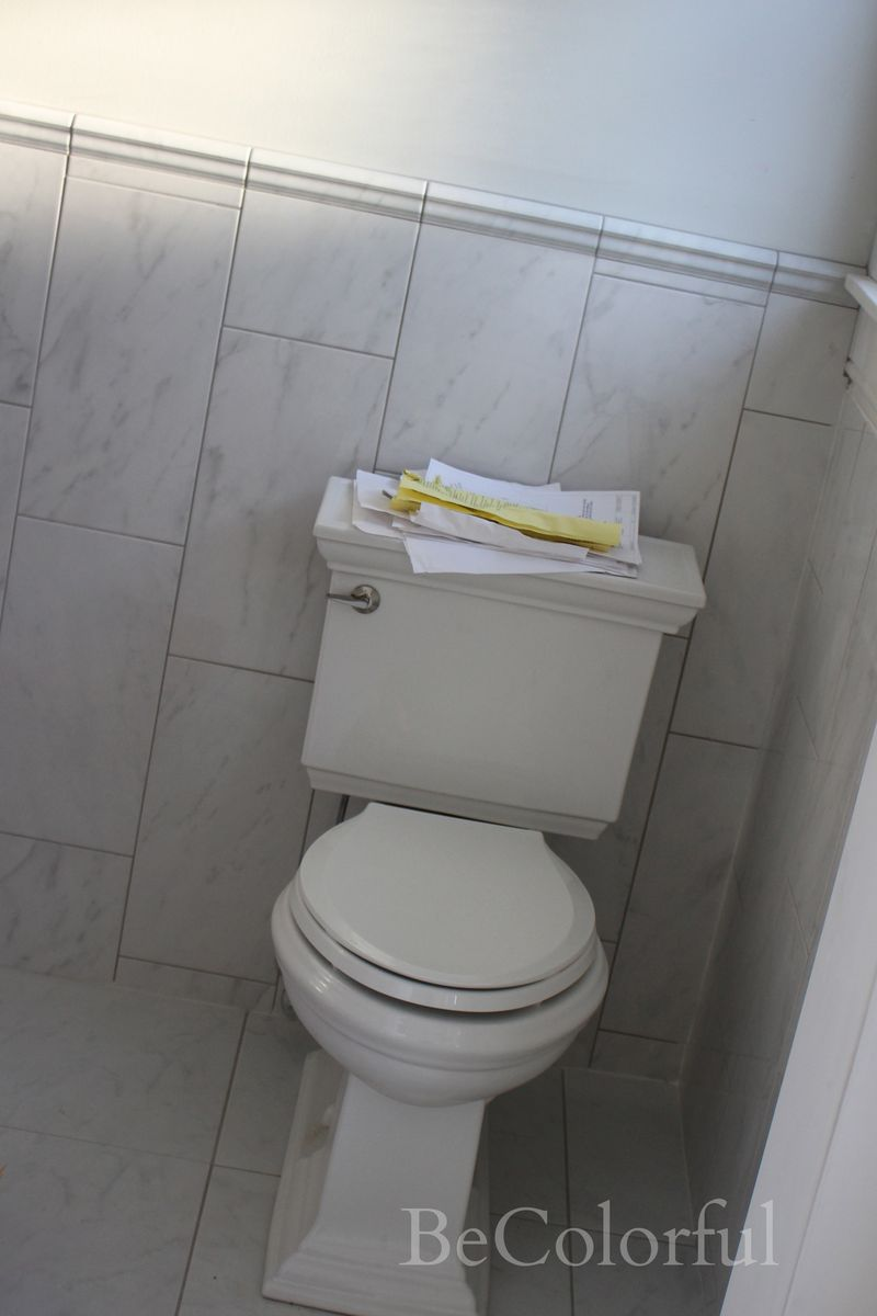 Toilet and tile.jpg
