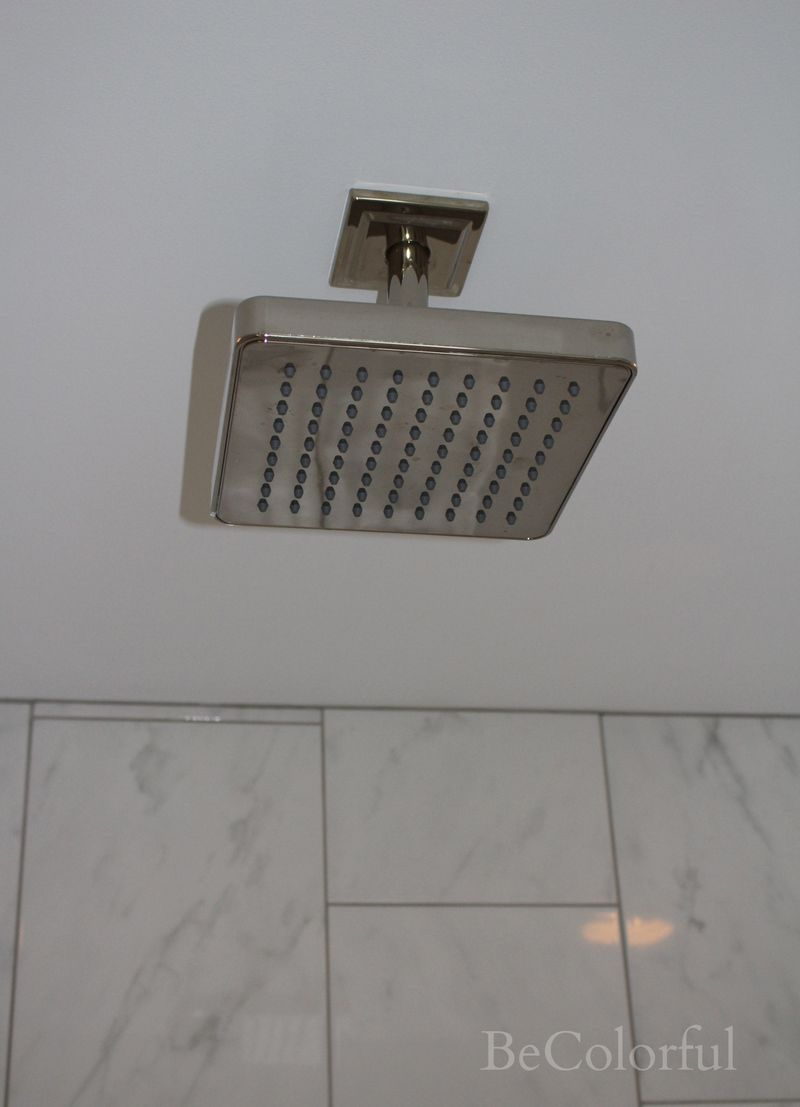 Rain head shower head.jpg
