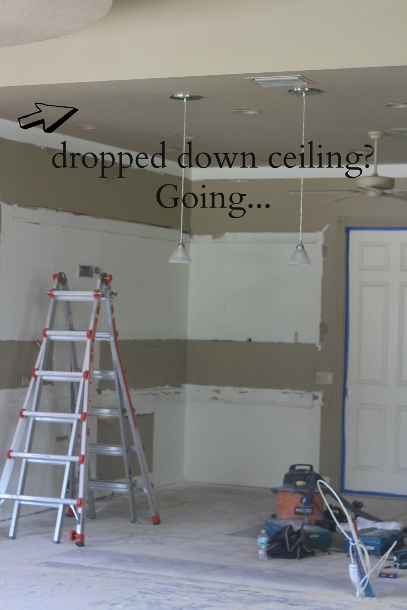 Day 2 ceiling going