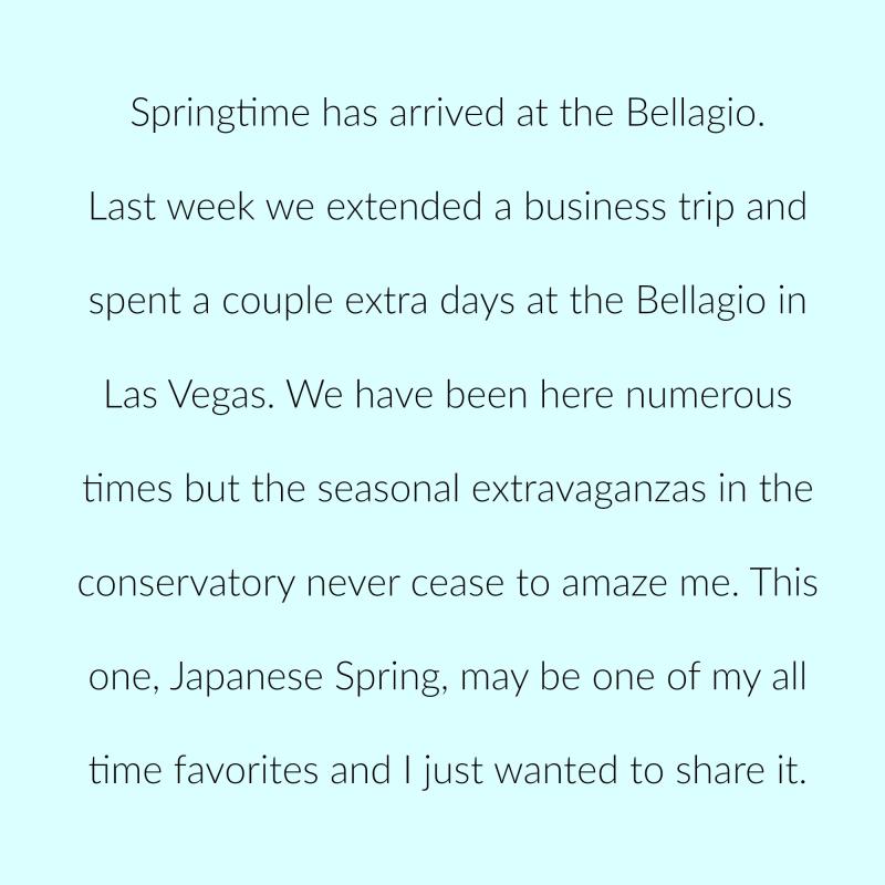 Bellagio p 1