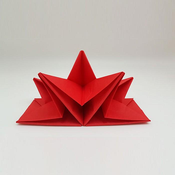 Origami folded napkin