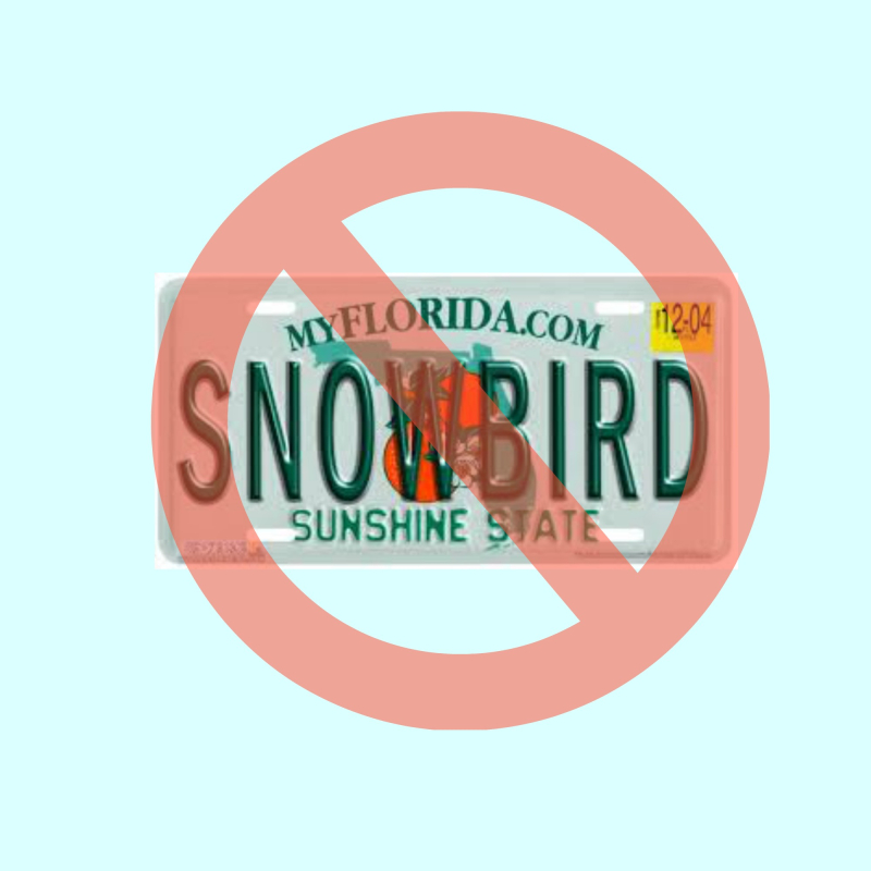 Not a snow bird