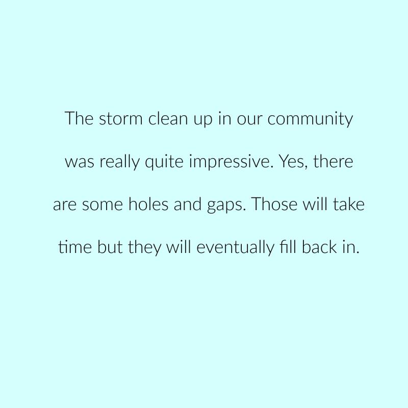Irma year 1 p 8