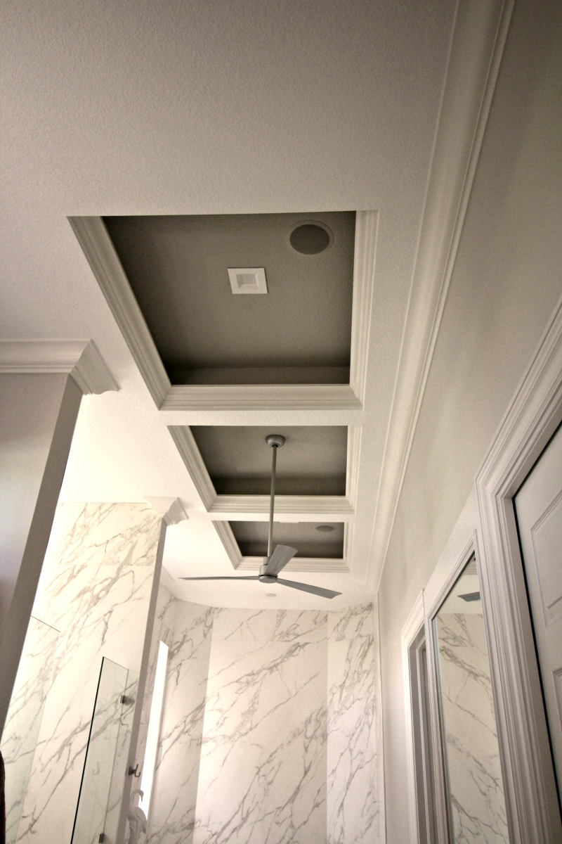 Bath ceiling and fan