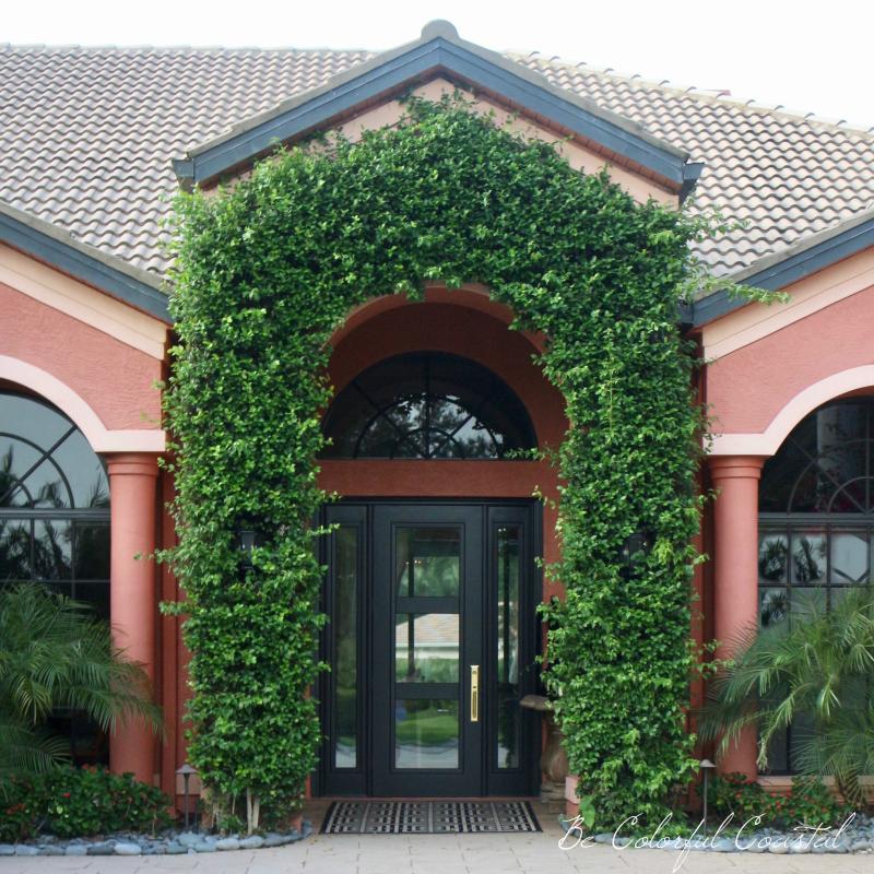Haydon front door 2
