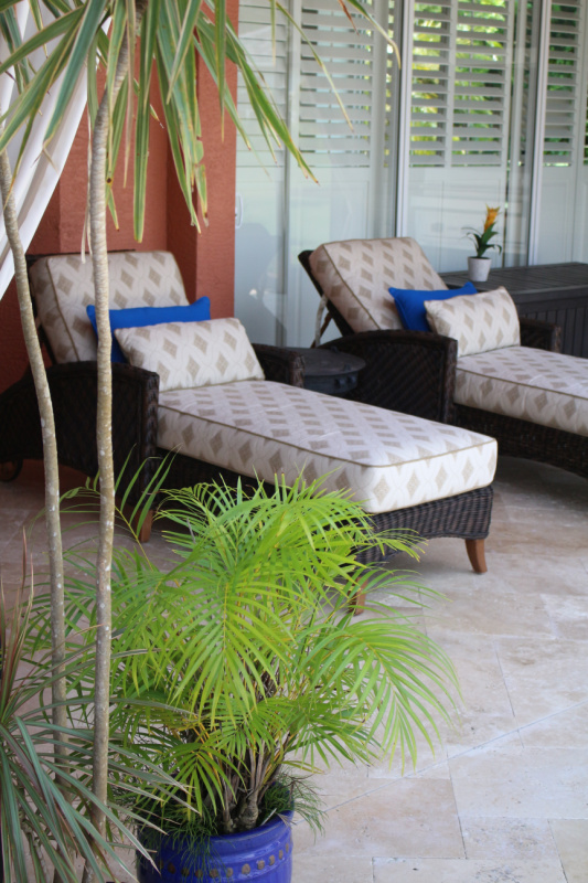 Chaise loungers with plants copy